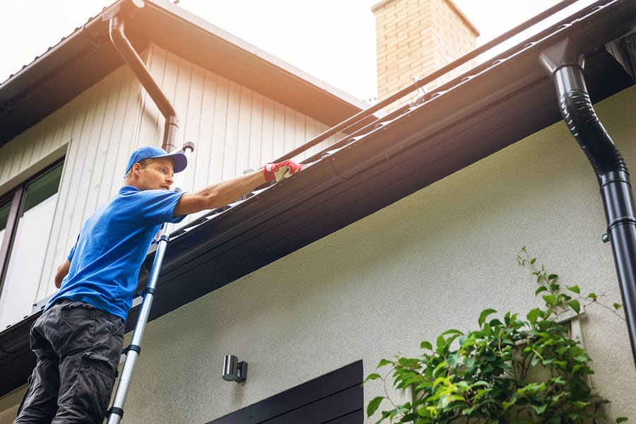 South Shore Window Cleaning - About